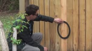 How To Install A Dog Window In A Fence