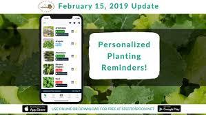 february 15 2019 update weekly