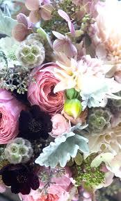 beautiful flower wallpaper mobile