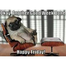 happy friday what breed is it