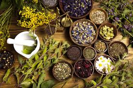 herbal liniments and poultices for your