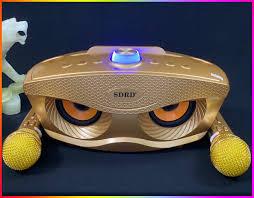 Video+ Ảnh Thật] Loa Bluetooth Karaoke Kèm 2 Mic SDRD-306 ...