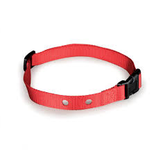 Fencing Replacement Collar Strap By Petsafe Grp Igfrcs