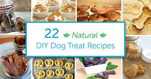 22 diy natural organic dog treat recipes