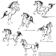 Sticker Arabische Paarden Pixers We Leven Om Te Veranderen