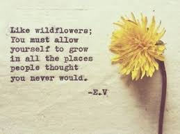 the best quotes about flowers funny how flowers do that