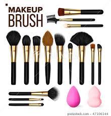 makeup brush set vector cosmetic