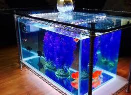 59 tabletop fish tank aquariums