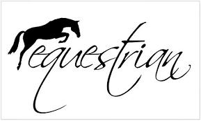 Amazon Com Cafepress Equestrian W Jumping Horse Rectangle Bumper Sticker Car Decal Home Kitchen
