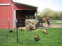 Loafing Pen Sheepy Hollow Farm