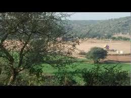 Haryana decides to develop bio-diversity park at Villager Kasan in Gurugram district