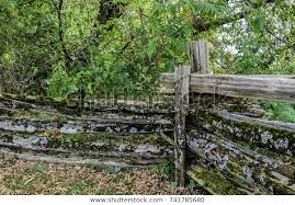 Old Weathered Cedar Fence Rails Posts Stock Photo Edit Now 741785680