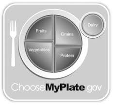 myplate an overview sciencedirect