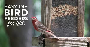 20 Easy Diy Bird Feeders For Kids And Adults Fabulessly Frugal