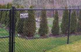 Vinyl Coated Vs Galvanized Chain Link Fences Pacific Fence Wire Co