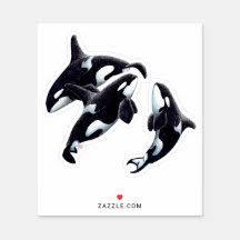 Whale Laptop Stickers Skins Zazzle