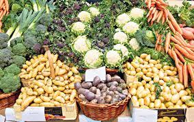 beautiful vegetable gardens