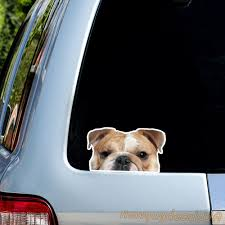 English Bulldog Sticker Car Decal Window Sticker Vinyl Sticker Bulldog Decal Window Decal Atc Decal Tumbler Decal Bulldog Sticker In 2020 Oracal Vinyl English Bulldog Car Decals