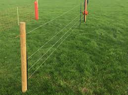 Pics Cost Effective Temporary Sheep Fencing Options On Show Agriland Ie