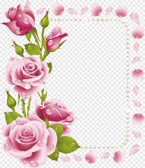 ارتفع الوردي وردة زهرة إطارات الوردي والإطار الفوشيه ترتيب