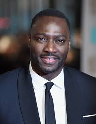 Biography of Adewale Akinnuoye-Agbaje and Net-worth – 2019 Latest ...