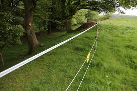 Electric Fencing For Cattle Electric Fencing Direct