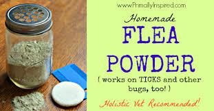 homemade flea powder primally inspired