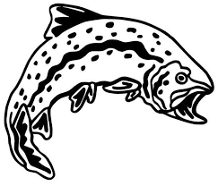Trout Decal Fsn1 231 Boat Truck Window Stickers Wildlife Decal