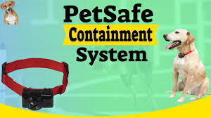 Petsafe Wireless Dog And Cat Containment System In 2020 Dog Cat Bark Collar Reviews Pet Fence