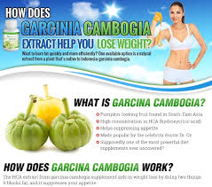 how does garcinia cambogia extract