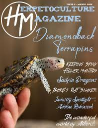 HM Issue #5 - March 2020 by Herpetoculture Magazine - issuu