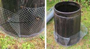 How To Rodent Proof Your Compost Bin Predator Free Nz