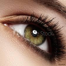 eye with extremely long eyelashes