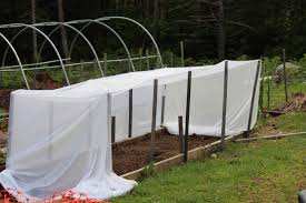 shade cloth southern exposure seed