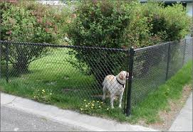 Galvanized Diamond Mesh Portable Fence Panels For Dog Kennels
