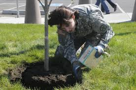 File:U.S. Army Sgt. 1st Class Adrian Bennett with the 364th Sustainment  Command fertilizes newly-planted trees during the unit's commemoration of  Earth Day in Marysville, Wash., April 22, 2013 130422-A-WJ570-363.jpg -  Wikimedia Commons