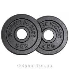 dolphin fitness black cast iron olympic