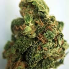 Buy Tahoe OG Kush Online - Buy Tahoe OG Kush Marijuana weed online