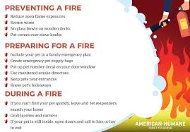 July 15th Is National Pet Fire Safety Day American Humane American Humane