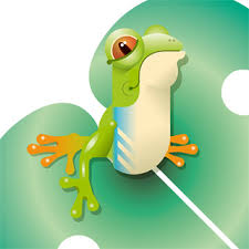 Tree Frog Decal Jungle Set Tree Frog On Leave Wall Decal Flickr