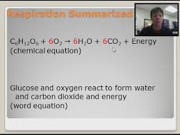 what is the chemical equation for