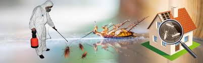 Controlling pest with active pest control service on time