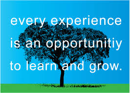 quotes about opportunity and growth quotes