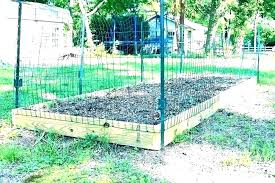 vegetable garden fence ideas brend club