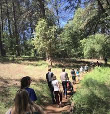 Adam Ryan Preserve | Bear Yuba Land Trust
