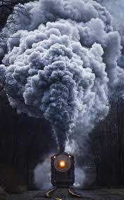 nature train portrait display