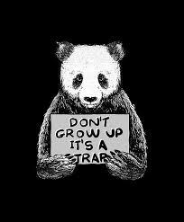trap quotes panda digital art by turi cinta