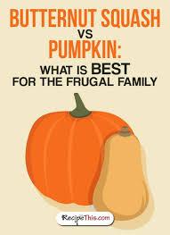 ernut squash vs pumpkin what is
