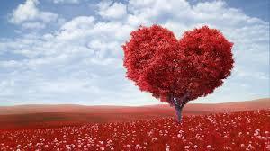 احلى صور قلوب رومانسية تعبر عن الحب Hd 2020