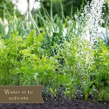 vegetable garden weed preventer